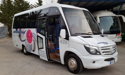 Mnibus-Sprinter-Mercedes-5191